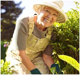 Home Care Outdoor Activities