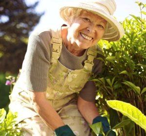Summer Senior Care Tips