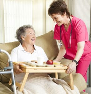 Day-to-Day Senior Care Services