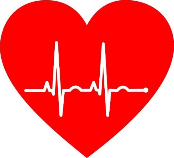 Heart with EKG readings | American Heart Month for senior health | Neighborly Home Care